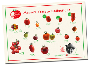 Mauro's Tomato Collection!