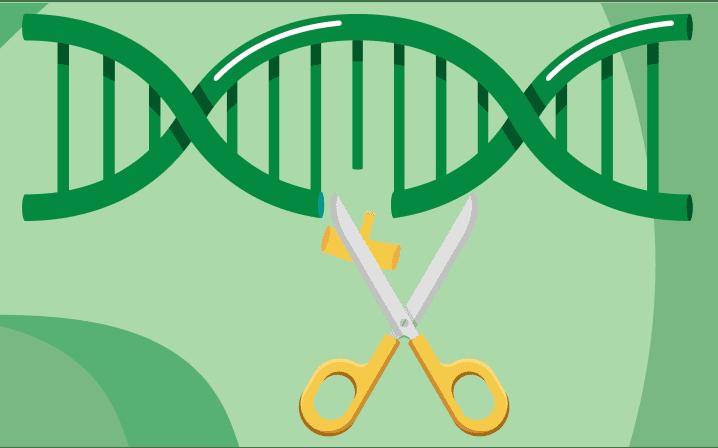 CRISPR-Cas9について