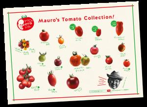 Mauro's Tomato Collection!